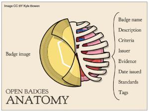 badge_anatomy