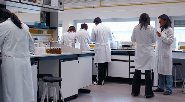Scientists in a laboratory of the University of La Rioja.