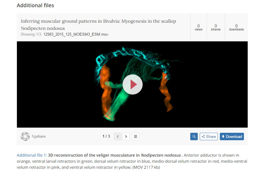 Widget displaying previewable video on Frontiers in Zoology article page
