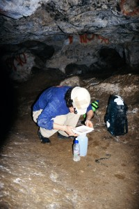 Dr. Christian Wirkner collecting T. argentarii on Monte Argentario, Italy