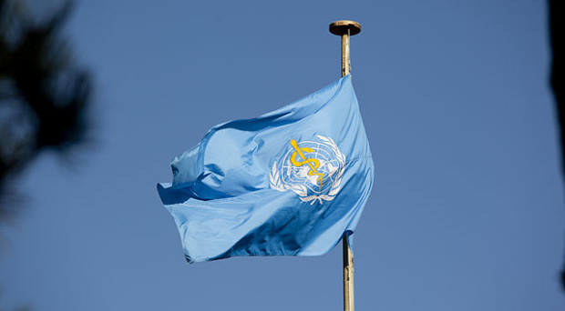 Photograph of WHO flag