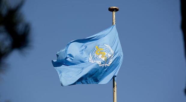 Photograph of WHO flag