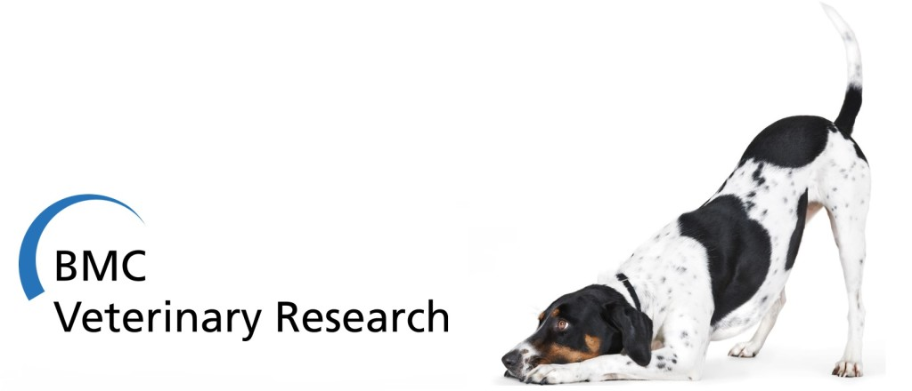 iStock image and BMC Veterinary Research logo