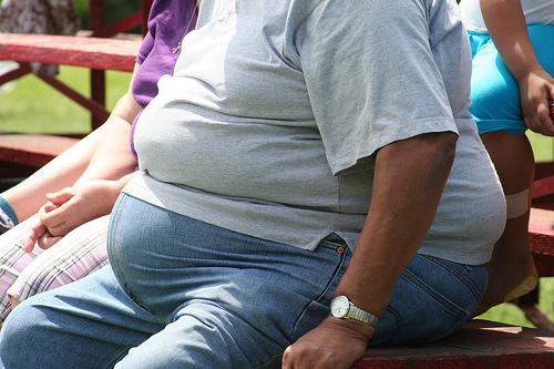 Obesity_flickr_Tony-Alter