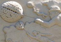 brain-1618377 Pixabay Public domain