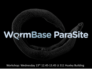 Wormbase workshop to use the ParaSite webpage, discover how to BLAST and be introduced to BioMart