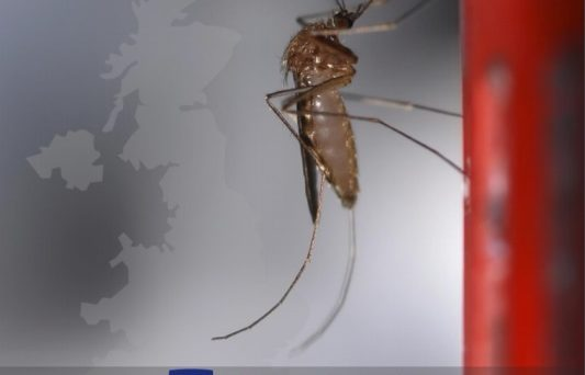 Vector-borne diseases in the UK Conference Poster, including sponsors