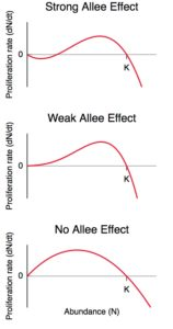 Allee effects