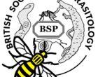 Untitled.jpeg BSP logo