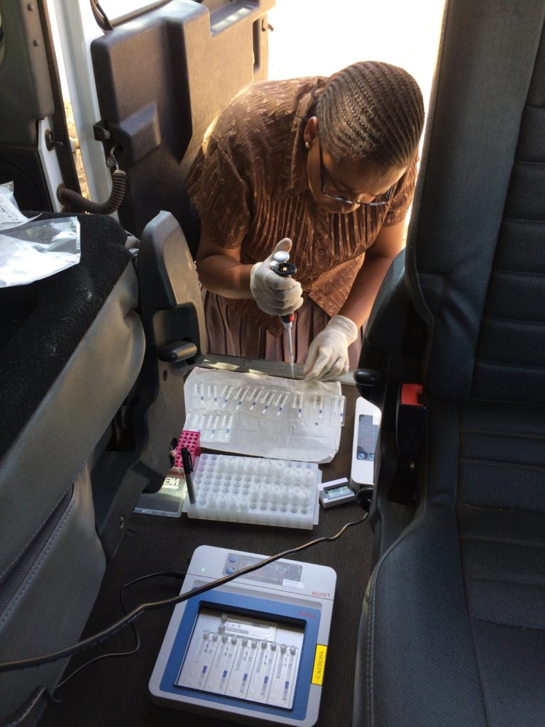 Djinnichip loading and assay processing on two flatbed heat blocks powered by the 4x4 vehicle battery, carried out by the study nurse (Aiweda Malisa). Image Credit Tamsyn Derrick