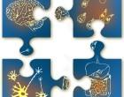 2014-04_thematic series_brain-gut-jigsaw- crop