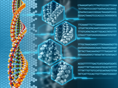 DNA-analysis 16.1