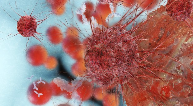 Could we eradicate cancer one day?