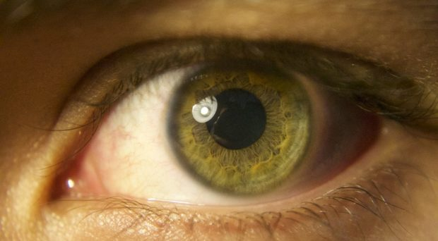 Could retinal inflammation become a biomarker of  seizure burden?
