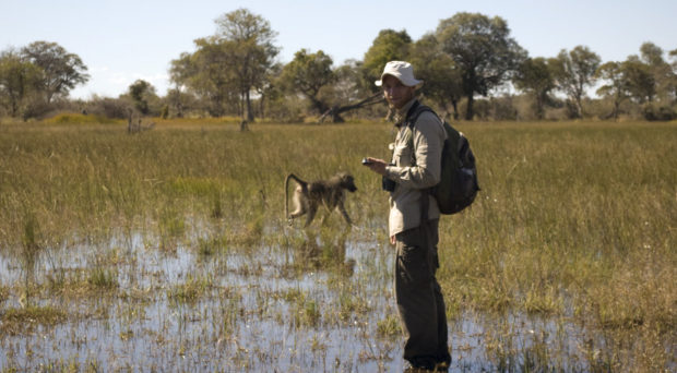 Urs Kalbitzer performing fieldwork in the Okavango