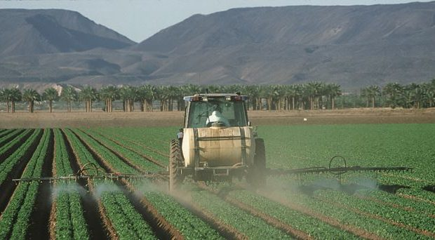 Pesticides have been implicated in the cause of sporadic Parkinson's disease .