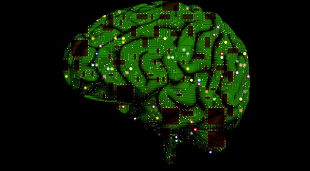 Are biological systems too complex for the human brain?
