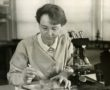 1280px-Barbara_McClintock_(1902-1992)_shown_in_her_laboratory_in_1947