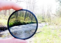 perception photo
