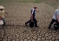 Chinese landless farmer