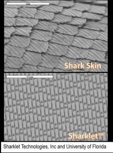 SharkletTech