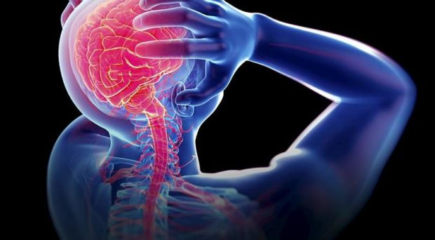 Chronic pain, is a complex biopsychosocial mixture of nociception, behavior, learning, emotions, and social interaction