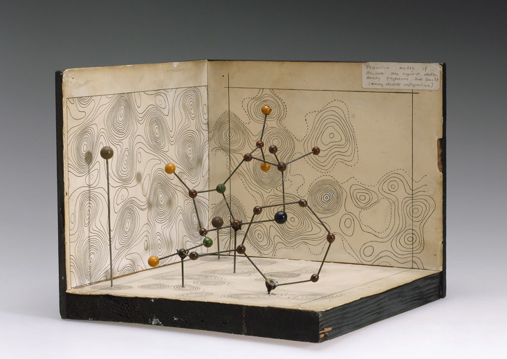 Molecular model of Penicillin by Dorothy Hodgkin, c.1945.