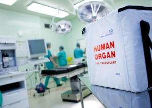 organ donation box (deceased)