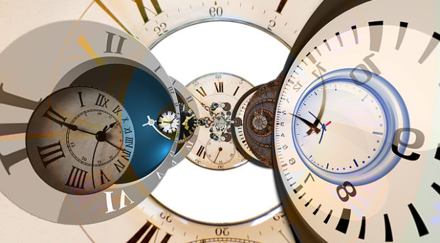 Almost every organ in your body has its own clock, called a circadian clock.